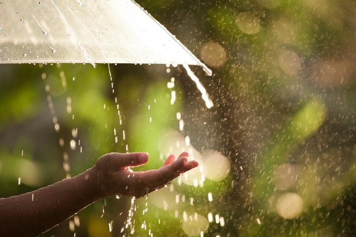 Woman hand with umbrella in the rain